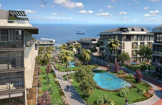 Palm Marin